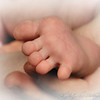 Babies : 1 gallery with 49 photos